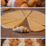 Easy Dinner Rolls Recipe and Tutorial via Landeelu