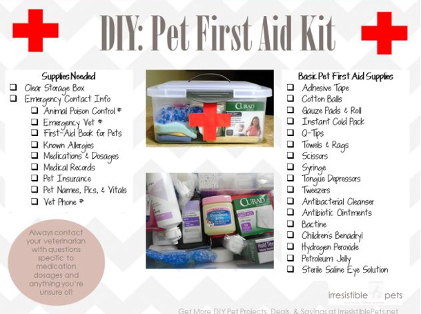 Irresistable Pet checklist first aid kit for pets