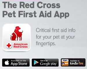 Red Cross pet app first aid