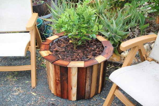 instructables planter made from a plastic drum barrel roundup for landeelu dot com