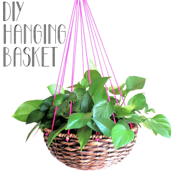 hanging plant via making mondays