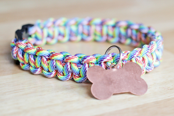 rainbow paracord dog collar tutorial via handsoccupied