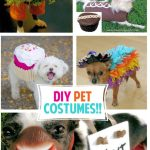 Adorable DIY Pet Costumes
