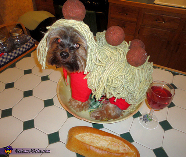 spaghetti-n-meatballs-costume