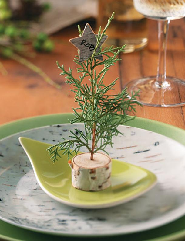 Birch Tree Placeholder via Handyman