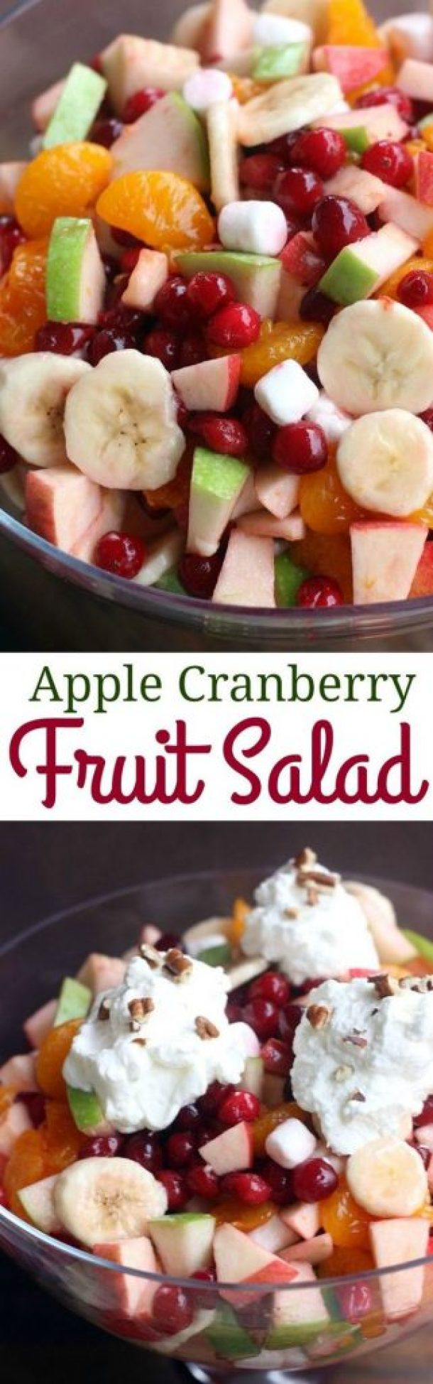 Apple Cranberry Fruit Salad Side Dish Recipe | Tastes Better From Scratch
