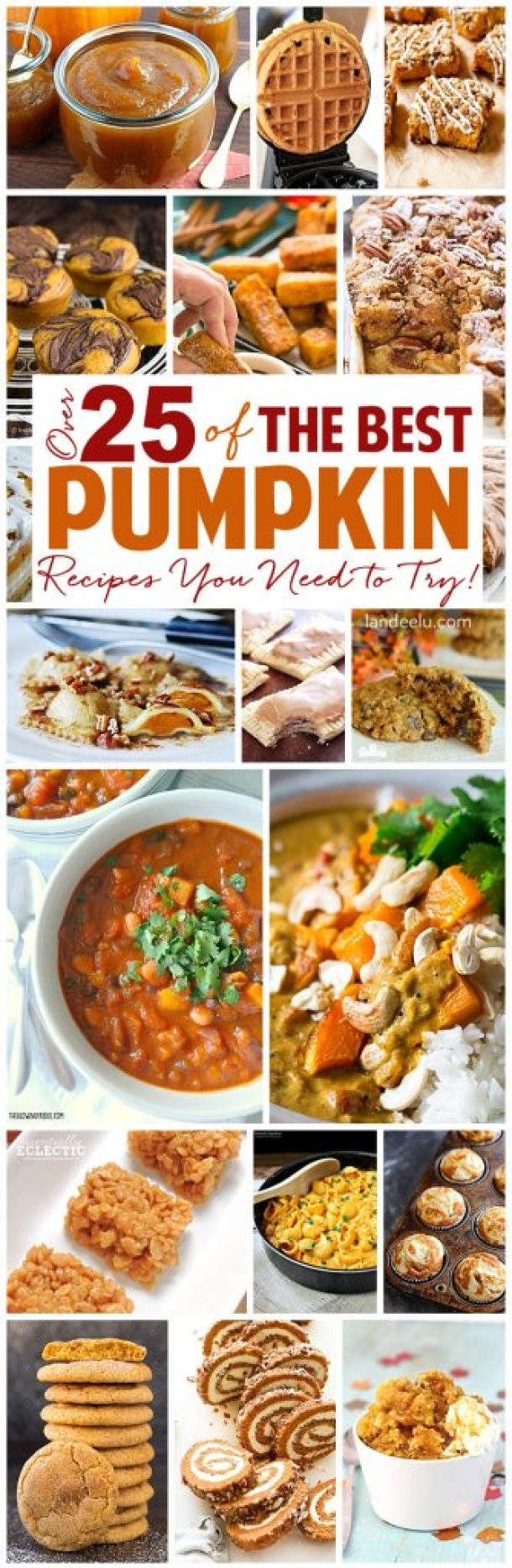 Nothing tastes better than pumpkin in the fall and through winter! Try these pumpkin recipes... some desserts, some savory! Yum! Everything pumpkin!