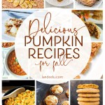 Nothing tastes better than pumpkin in the fall and through winter! Try these pumpkin recipes... some desserts, some savory! Yum! Everything pumpkin! #pumpkinrecipes #fallrecipes #pumpkin