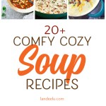 20 Best Soup Recipes: Homemade