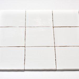 DTG Mooi Wonen Wandtegels Oud Hollandse Witjes Handvorm Wit 13x13