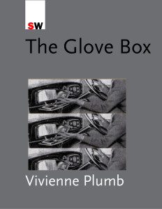 The Glove Box and Other Stories by Vivienne Plumb
