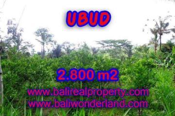 Land in Bali for sale, astounding view in Ubud Bali – TJUB375