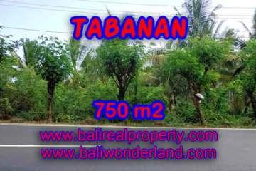 Property sale in Bali, Beautiful land in Tabanan for sale – TJTB138