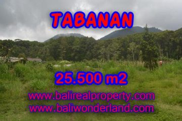 Spectacular Property for sale in Bali, land for sale in Tabanan Bali – TJTB085