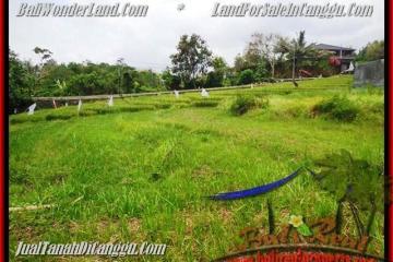 Affordable PROPERTY LAND SALE IN Canggu Pererenan TJCG161