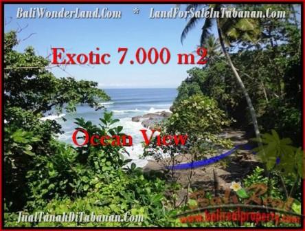 Beautiful PROPERTY Tabanan Selemadeg 7,000 m2 LAND FOR SALE TJTB200