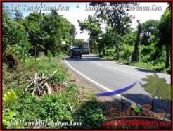 Affordable LAND SALE IN Tabanan Selemadeg BALI TJTB200