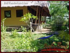 FOR SALE Exotic LAND IN Tabanan Selemadeg BALI TJTB200