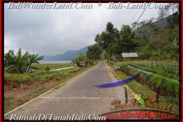 Beautiful TABANAN BALI 52,000 m2 LAND FOR SALE TJTB164