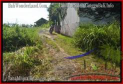 Exotic PROPERTY 1,000 m2 LAND FOR SALE IN CANGGU BALI TJCG178