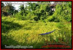 Magnificent PROPERTY 1,000 m2 LAND IN CANGGU BALI FOR SALE TJCG178