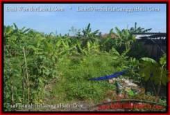 Beautiful PROPERTY CANGGU BALI 250 m2 LAND FOR SALE TJCG182