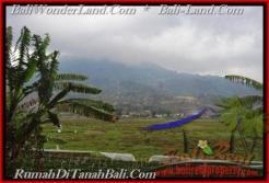 Affordable PROPERTY 52,000 m2 LAND FOR SALE IN Pancasari TJTB164
