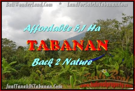 Magnificent 51,100 m2 LAND SALE IN TABANAN BALI TJTB166
