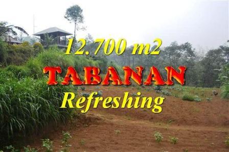 Exotic TABANAN BALI 12,700 m2 LAND FOR SALE TJTB167