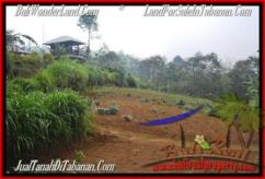 FOR SALE Beautiful 12,700 m2 LAND IN TABANAN BALI TJTB167
