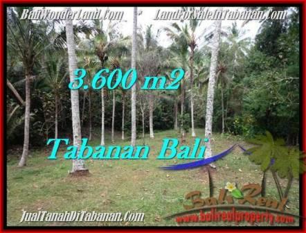 3,600 m2 LAND FOR SALE IN TABANAN BALI TJTB211