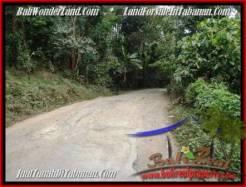 Affordable PROPERTY 3,600 m2 LAND FOR SALE IN Tabanan Selemadeg TJTB211