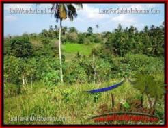 Affordable PROPERTY LAND IN TABANAN FOR SALE TJTB205