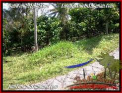 Affordable LAND SALE IN Tabanan Selemadeg BALI TJTB206