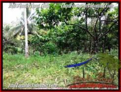 Beautiful LAND FOR SALE IN TABANAN TJTB206