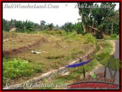 FOR SALE Beautiful PROPERTY LAND IN TABANAN TJTB208
