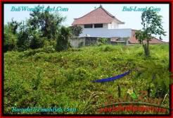 Magnificent PROPERTY CANGGU BALI 1,100 m2 LAND FOR SALE TJCG193