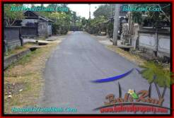 Affordable PROPERTY 435 m2 LAND FOR SALE IN CANGGU BALI TJCG196