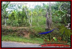 Exotic PROPERTY LAND SALE IN TABANAN TJTB215