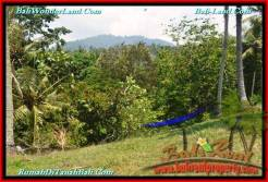 Beautiful 8,700 m2 LAND FOR SALE IN Tabanan Selemadeg TJTB233