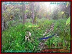 Magnificent PROPERTY LAND SALE IN TABANAN TJTB242