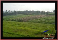 Beautiful PROPERTY LAND FOR SALE IN TABANAN BALI TJTB251