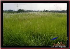Affordable TABANAN BALI 1,500 m2 LAND FOR SALE TJTB252