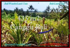Beautiful 435 m2 LAND IN CANGGU BALI FOR SALE TJCG196