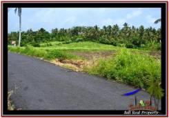 Affordable PROPERTY TABANAN LAND FOR SALE TJTB257
