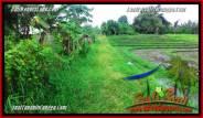 LAND FOR SALE IN Canggu Batu Bolong BALI TJCG198