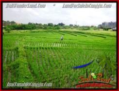 Affordable PROPERTY 3,380 m2 LAND SALE IN CANGGU BALI TJCG199