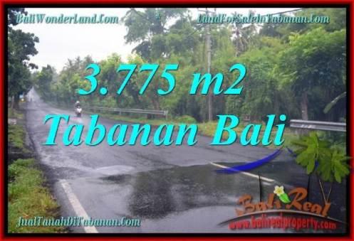 Magnificent 3,775 m2 LAND SALE IN TABANAN BALI TJTB271