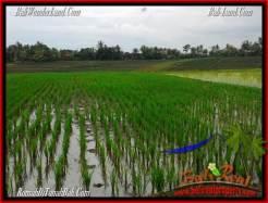 Exotic TABANAN BALI 2,400 m2 LAND FOR SALE TJTB263