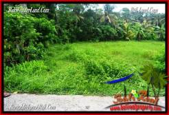 FOR SALE Beautiful PROPERTY 8,000 m2 LAND IN Tabanan Selemadeg TJTB287